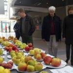 Fête de la Pomme 2016