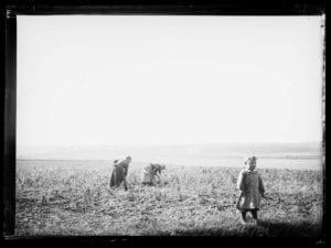 Paul Faugas Photographies de l'Eure au temps de l'impressionnisme 7 avril – 3 juin 2018