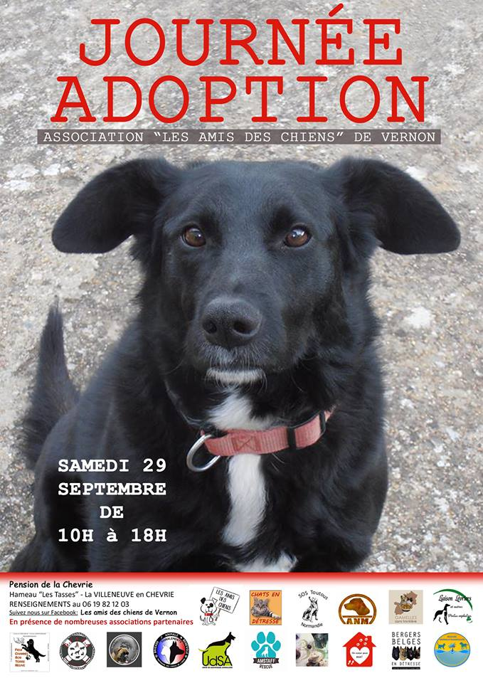 affiche journée adoption